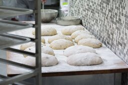 Loaves of unbaked bread on wooden table covered in flour