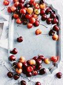 Festive cherry treats