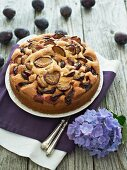 Sponge cake with plums and marzipan