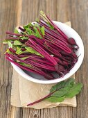 Young beetroot with the leaves cut off