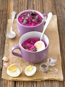 Cold beetroot soup with beetroot leaves, radishes, cucumber, dill and kefit