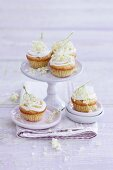 Mini cupcakes decorated with elderflowers