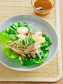 Duck with green papaya and grapefruit on a lettuce leaf