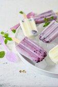 Homemade blueberry ice cream sticks