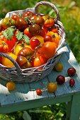 Tomaten im Körbchen