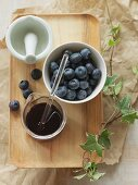 Blueberry extract and blueberries
