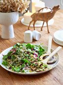Wheat salad with spinach, onions and dried cranberries
