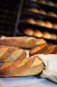 Semolina bread in a bakery