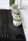 Small succulents in little, grey stone pots on black placemat