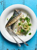 Fried mackerel fillets and a fennel and onion salad with apricots