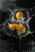 Physalis falling into water
