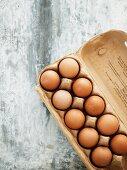Brown eggs in egg box