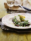 Pumpernickel with a chicory salad and a boiled egg