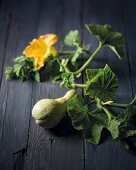 Butternut squash with leaves and flowers