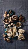 Various mushrooms on a grey surface