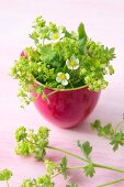 Lady's mantle and strawberry flowers in china bowl