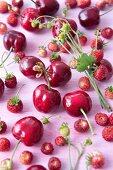 Cherries and wild strawberries