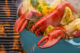 Steamed lobster in a pot with corn cobs, potatoes, lemons, coriander, rosemary and spices