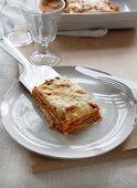 Vegetarian lasagnes