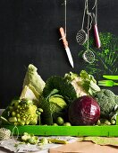 Various types of cabbages and cooking utensils