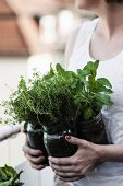Frau hält Einmachgläser mit frisch gepflanzten Kräutern