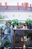 Pflanztisch und Trittleiter auf Dachterrasse dekoriert mit Pflanzen und Windlichtern