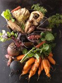 An arrangement of various root vegetables
