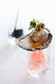 Oysters served on granita