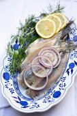 Soused herring fillets with onions