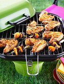 Chicken wings and dried fruit skewers on a barbecue