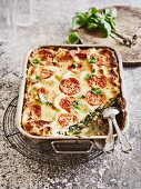 Chard lasagne with ricotta