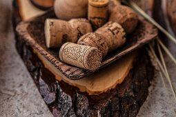 Wein- und Sektkorken in Holzschale auf Baumscheibe