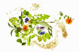 Ingredients for a wild herb salad with edible flowers and a honey vinaigrette