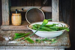 Young pea pods in a bowl on an old wooden table with a spilt salt shaker