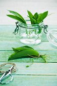 Wild garlic in a jar of water and in a bundle in front of it