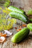 Pickling cucumbers and dill flowers on a wooden surface