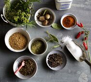 Various spices for making sausages