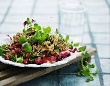 An autumnal salad with radicchio, walnuts and pomegranate seeds