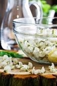 Akazienblüten in Schüssel Wasser mit Zitrone zur Herstellung von Akaziensirup