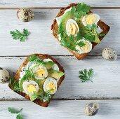 Toast with avocado, quail's eggs, garlic mayonnaise and herbs