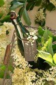 A bottle of elderflower syrup and edlerflowers in a wire basket