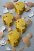 Chick biscuits and pieces of egg shells