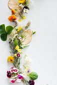 Various fresh herbs with edible flowers and dried pear chips
