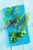 Fresh rosemary, basil, thyme and sage