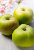 Three Bramley apples