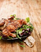 Spicy marinated grilled chicken on a bed of salad