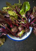 Beetroot with leaves in an enamel bowl