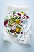 Beetroot and radish carpaccio with rocket pesto and feta