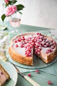 Redcurrant cheesecake with sugar, sliced
