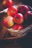 Rote Äpfel in Papiertüte